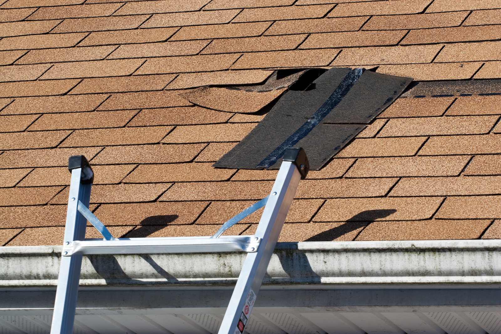 10 Tips When To Call The Roof Repair Guy