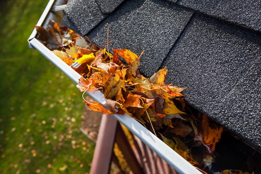 How To Clean Your Gutters (From The Ground) And Maintain Them This Spring