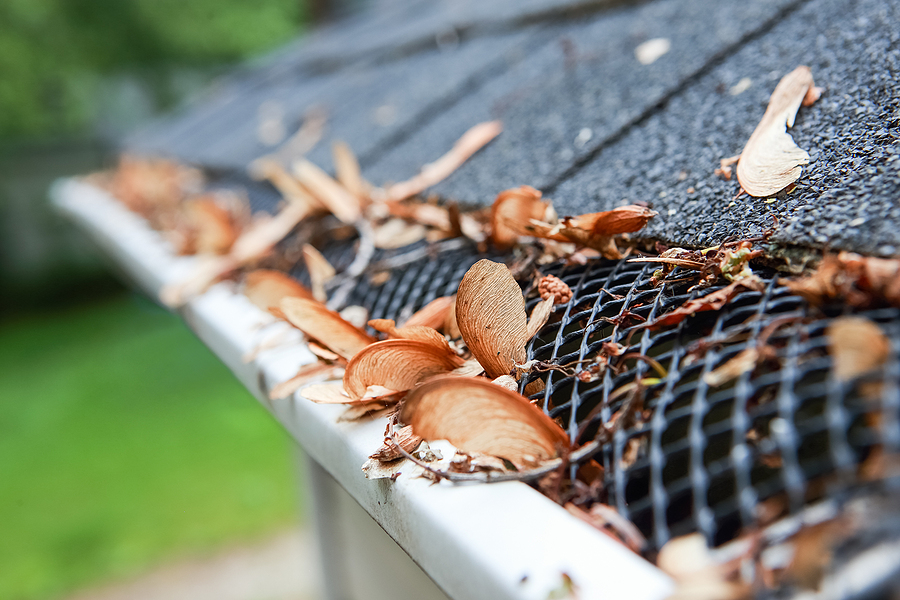 gutter guard to help roof maintenance
